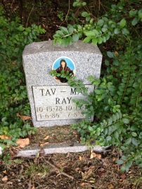 Tates Lane and Pet Cemetery (44)