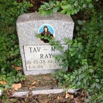 Tates Lane and Pet Cemetery (44)
